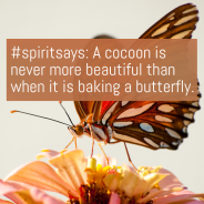 #spiritsays