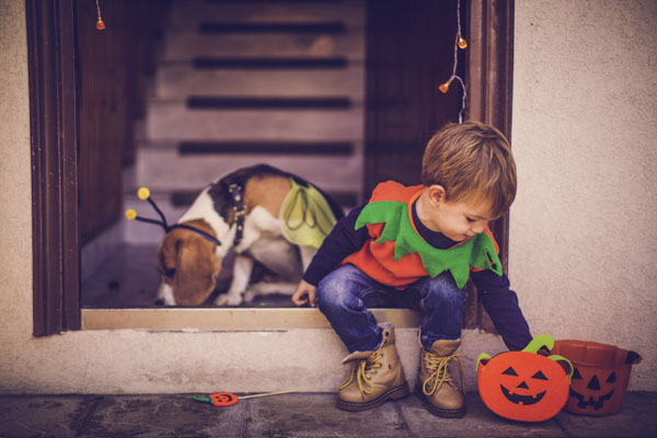 Trick or treat walk with dog