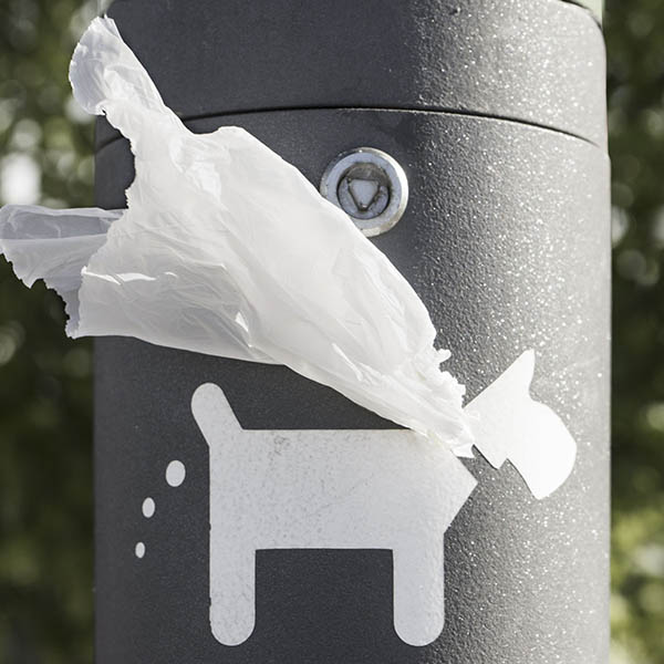 Dog with plastic cape reminder sign