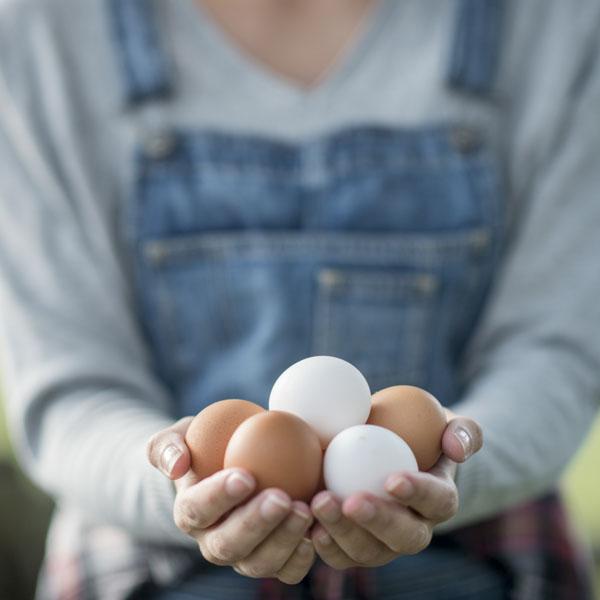 Girl farmer offering Grade AA+ eggs