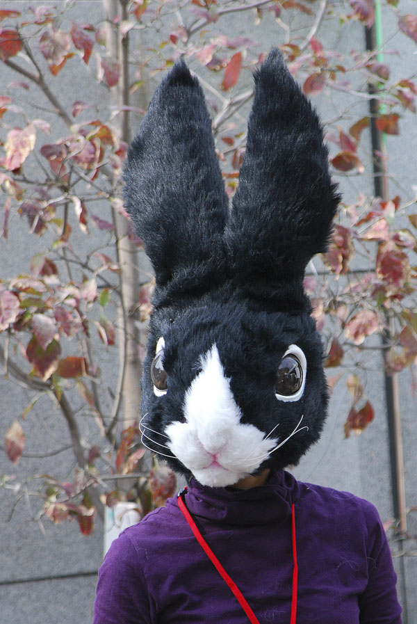 Person in Easter Bunny Costume at mall