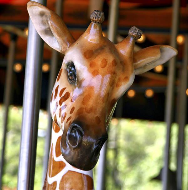 Giraffe carousel ride