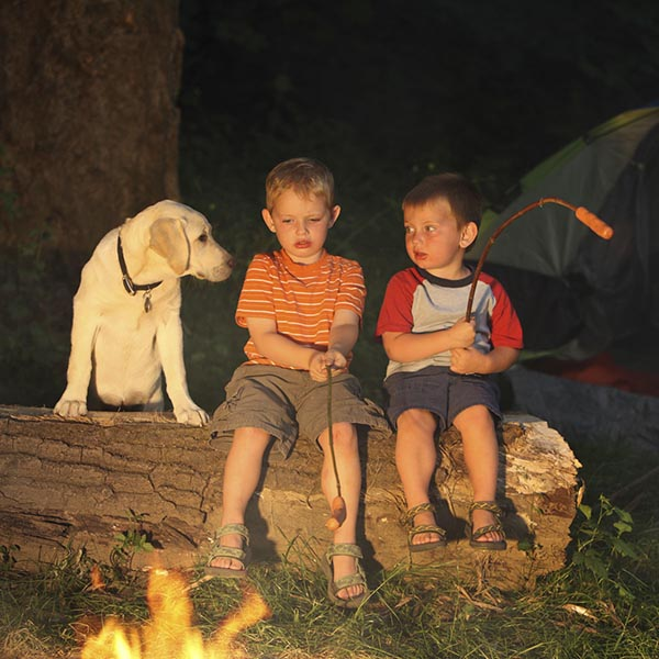 Little boys camping, roasting hot dogs, and talking